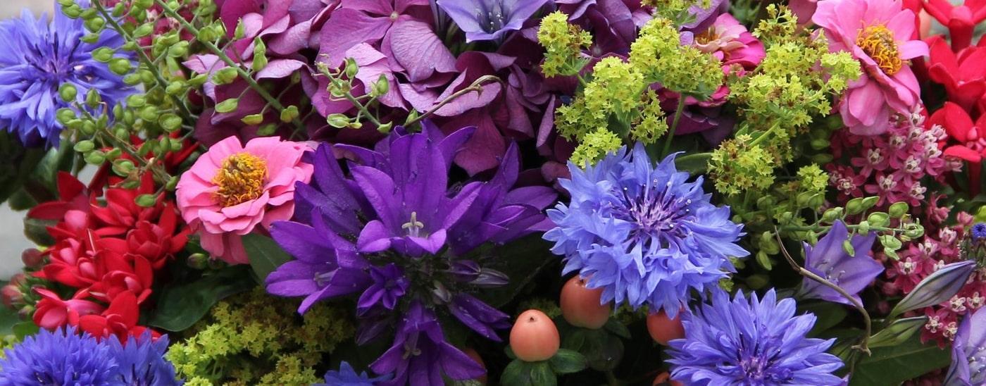 AGBs - Blumen Damerius