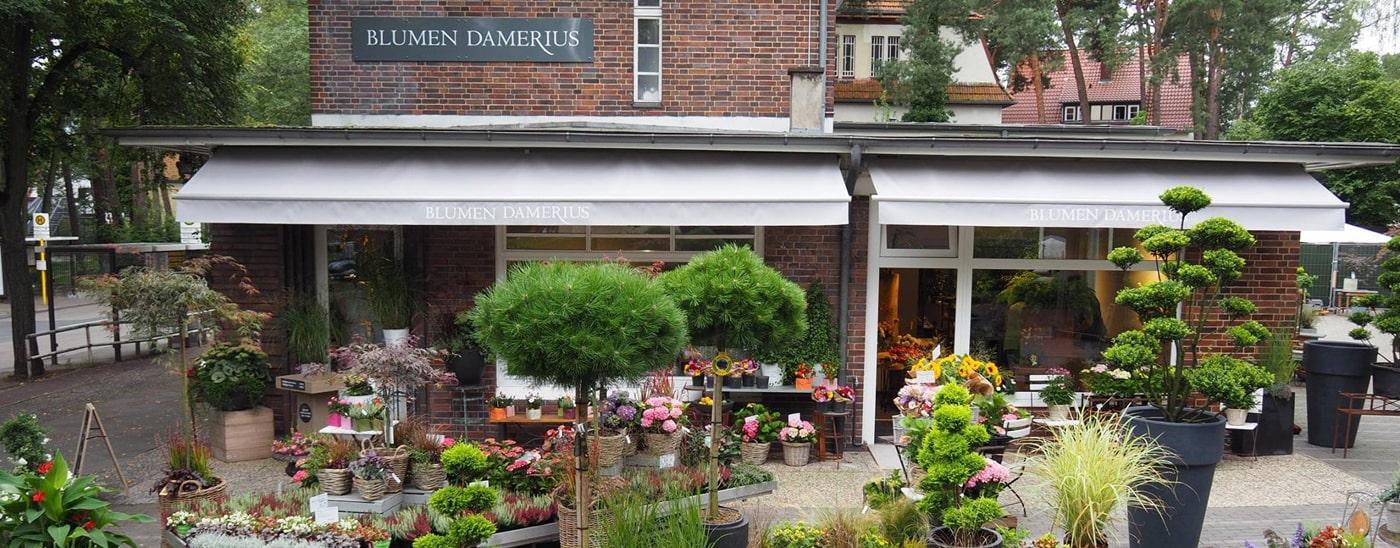 Das  Unternehmen - Blumen Damerius