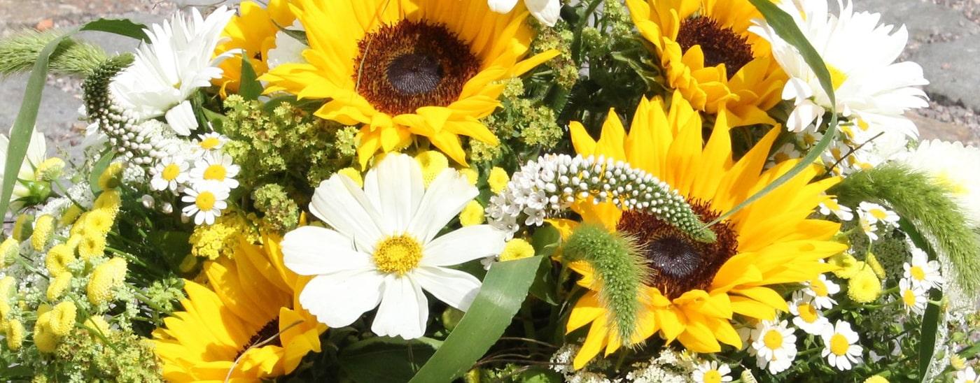 >Datenschutzerklärung - Blumen Damerius