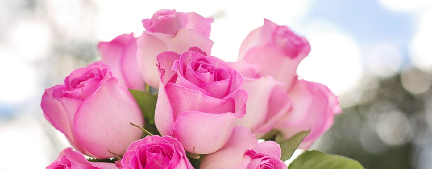Blumenkauf ist immer Vertrauenssache - Blumen Damerius