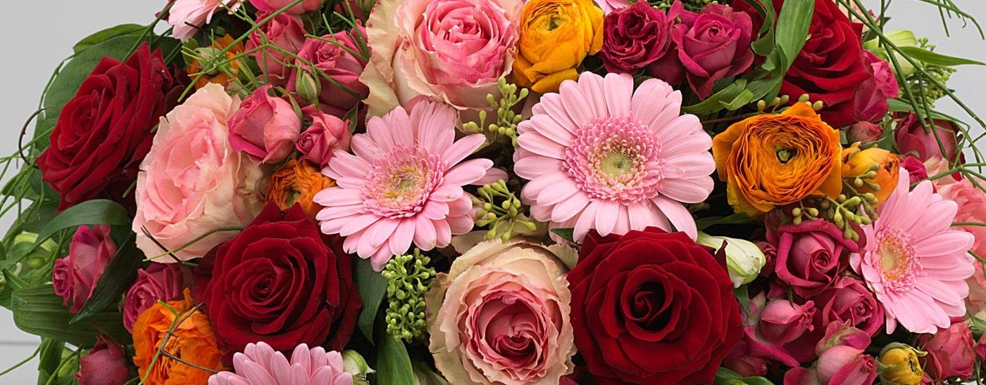 Impressum von www.blumen-damerius.de - Blumen Damerius